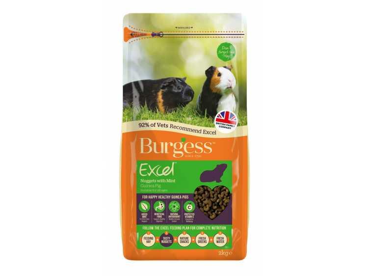 Excel Guinea Pig med mint
