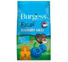 Excel Blueberry Bakes